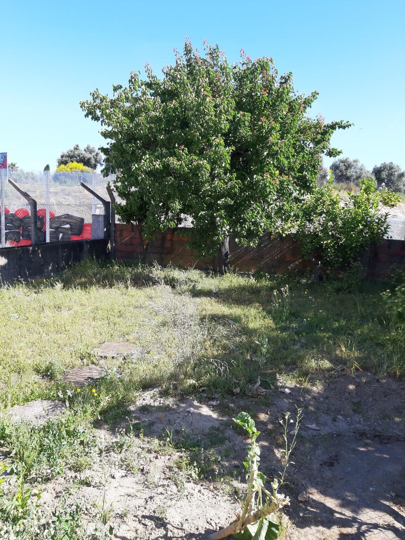 Jardim 2
